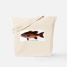 1134 Smallmouth Bass Tote Bag