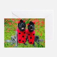Lady Bug Garden Greeting Card