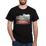 FLDS Mormon Temple Dark T-Shirt