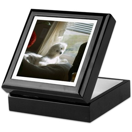 DAY DREAMING BICHON KEEPSAKE BOX