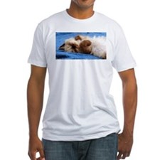 Himalayan Kitten Shirt