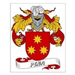 Pena Family Crest Small Poster