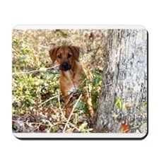 JUBA LEE RIDGEBACK Mousepad