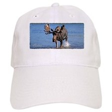 Maine Moose Baseball Cap