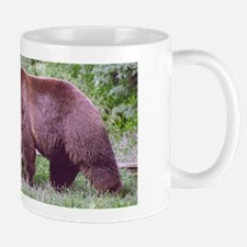 Brown Bear Looking for Grubs Mug