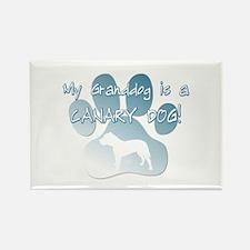 Presa Canario Granddog Rectangle Magnet (10 pack)