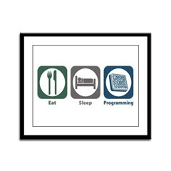 Eat Sleep Programming Framed Panel Print