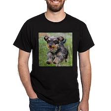 Black Wirehair T-Shirt