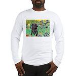 Irises / Cairn (#17) Long Sleeve T-Shirt