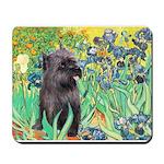 Irises / Cairn (#17) Mousepad