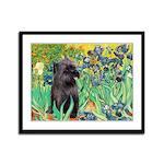 Irises / Cairn (#17) Framed Panel Print