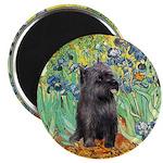 Irises / Cairn (#17) Magnet