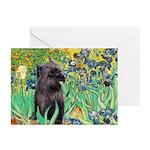 Irises / Cairn (#17) Greeting Cards (Pk of 10)