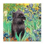 Irises / Cairn (#17) Tile Coaster