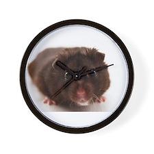 Unique Hamster Wall Clock