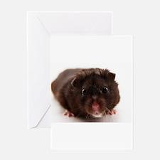 Cute Hamster Greeting Card