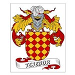 Tejedor Family Crest Small Poster