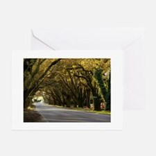 Horse & Carriage on South Boundary Greeting Cards