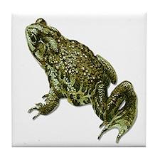 Pocket Frog Tile Coaster