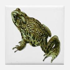 Pocket Frog Tile Coaster