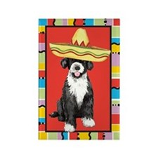 Fiesta PWD Rectangle Magnet