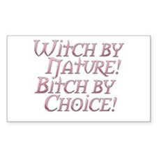 Witch Bitch Feminine Wiccan Rectangle Decal