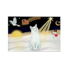 Night Flight - White Cat Rectangle Magnet (10 pack