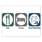 Eat Sleep Dry Cleaning Small Poster