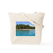 Funny Aqua Tote Bag