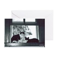 Two cat window Greeting Cards (Pk of 10)