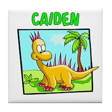Caiden Dinosaur Tile Coaster