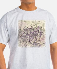 Fairy Duster & Prickly Pear  Ash Grey T-Shirt