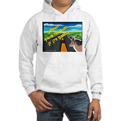 I Shoot From The Road Hoodie