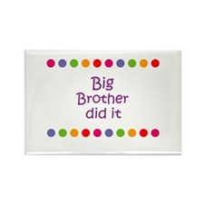 Big Brother did it Rectangle Magnet