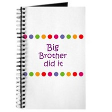Big Brother did it Journal