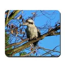 Kookaburra In Gum Tree Mousepad