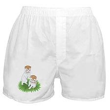 Baby Ferret Boxer Shorts