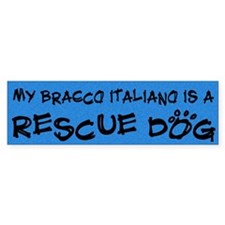Rescue Dog Bracco Italiano Bumper Bumper Sticker