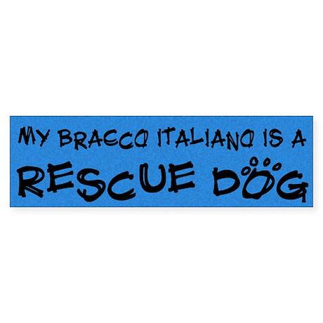 Rescue Dog Bracco Italiano Bumper Sticker