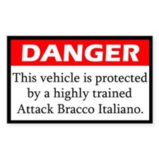 Attack Bracco Italiano Decal