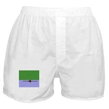 ROWER GREEN BLUE PAINTED Boxer Shorts