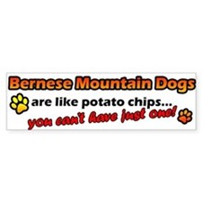 Potato Chips Bernese Mountain Dog Bumper Bumper Sticker
