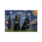 Starry / Schipperke Pair Rectangle Magnet (10 pack