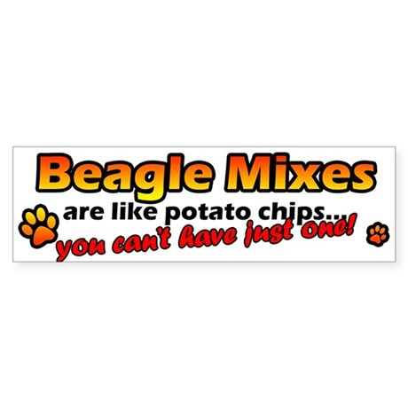 Potato Chips Beagle Mix Bumper Sticker