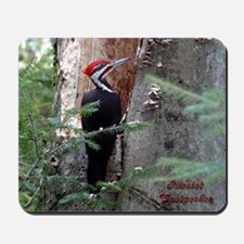 Pileated Woodpecker Mousepad