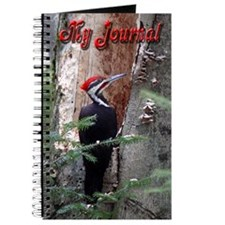 Pileated Woodpecker Journal