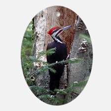 Pileated Woodpecker Oval Ornament
