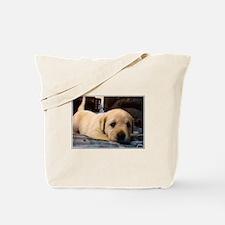 Puppy Stuff Tote Bag