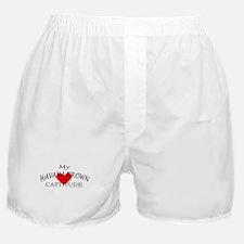 HAVANA BROWN Boxer Shorts