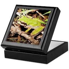 Pacific Treefrog Keepsake Box